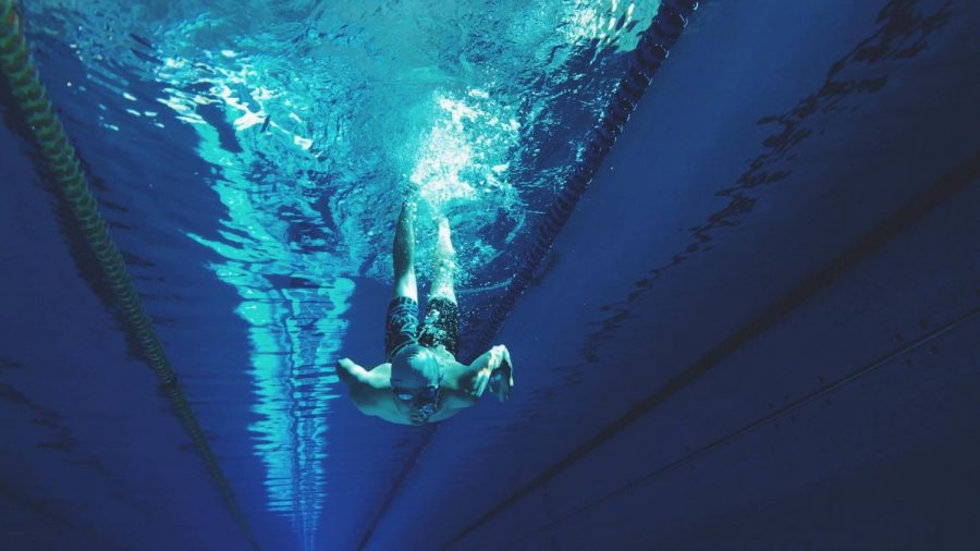 Taking a dive into the day in the life of a swimmer