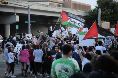 Crowds gather at Palestine solidarity protest.
