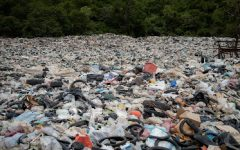 The Dire Need for Recycling